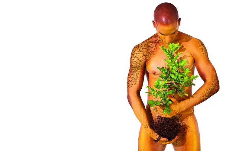 planta-tablet